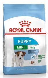 Sausas ėdalas šunims Royal Canin Mini Puppy, 2 kg