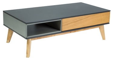 Signal Meble Roma A Table 120x60cm Grey