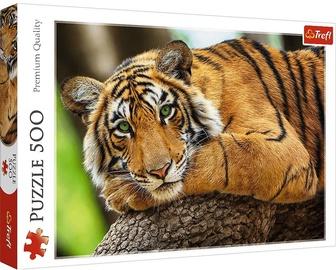Trefl Puzzle Tiger 500pcs 759837