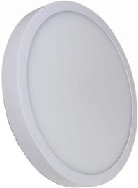 Light Prestige Loria 1 Wall Lamp 26W LED White