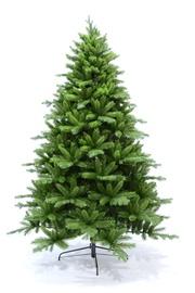 Kalėdinė eglutė Royal, 240 cm aukščio