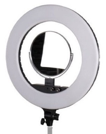 StudioKing LED Ring Lamp LED-480ASK