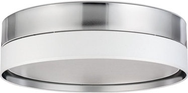 Lubinis šviestuvas TK Lighting Hilton Silver 4179, 4x15W E27 LED