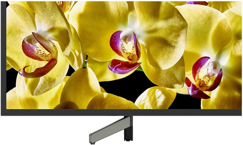 Televizorius Sony KD55XG8096 LED