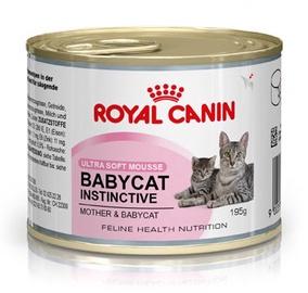 Royal Canin FHN Babycat Instinctive 195g
