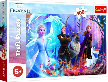 Dėlionė Frozen 2 16366, 100 dalių