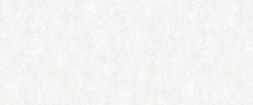 Vinilinis tapetas flizelino pagrindu Stenova 88247 Patricio, baltas, sidabro, tekstūrinis, 1.06 m
