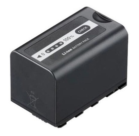 Panasonic VW-VBD58 Battery