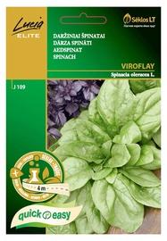 Dārza spinātu sēklas Viroflay