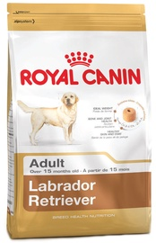 Sausas ėdalas šunims Royal Canin BHN Labrador Retvrievier Adult, 12 kg