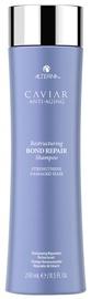 Šampūns Alterna Caviar Restructuring Bond Repair, 250 ml