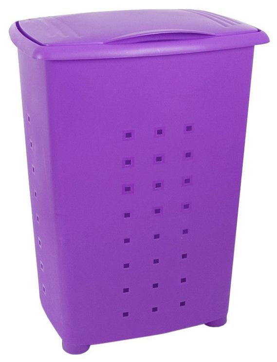 Tatay Millenium 60l Violet