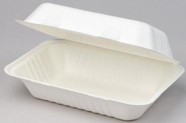 Arkolat BioBox Box 22.8x15x4x8cm 50pcs