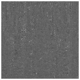 Akmens masės plytelės C6411, 60 x 60 cm