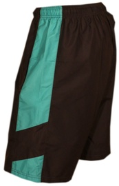 Bars Swimming Shorts Black/Blue 205 L