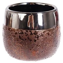 Verners Moon Flower Pot Copper 12cm