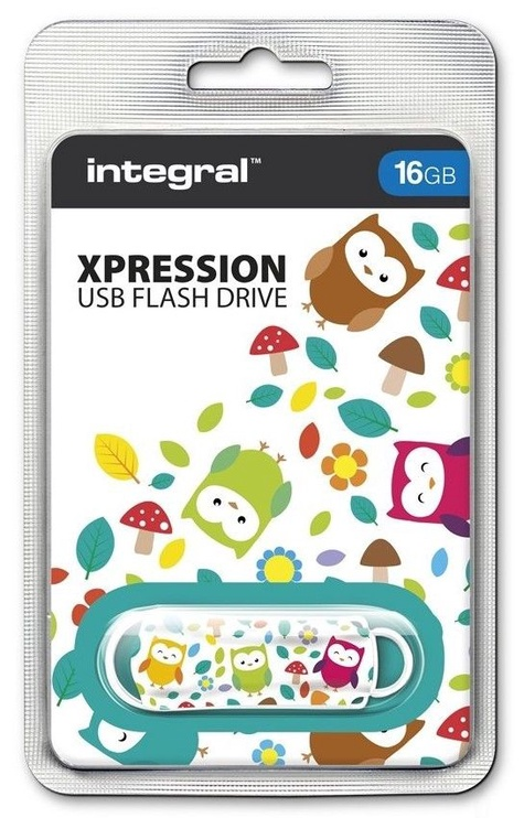 USB atmintinė Integral Xpression Art Owls, USB 2.0, 8 GB