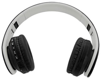 Ausinės Qoltec Wireless Stereo Headset Black