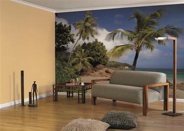 Fototapete ar palmām, 2.54 m