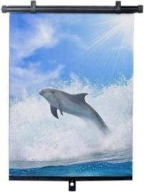 Bottari Dolphin Side Roller Blinds