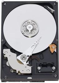 Kietasis diskas Seagate BARRACUDA 7200 500GB SATA 16MB ST500DM002