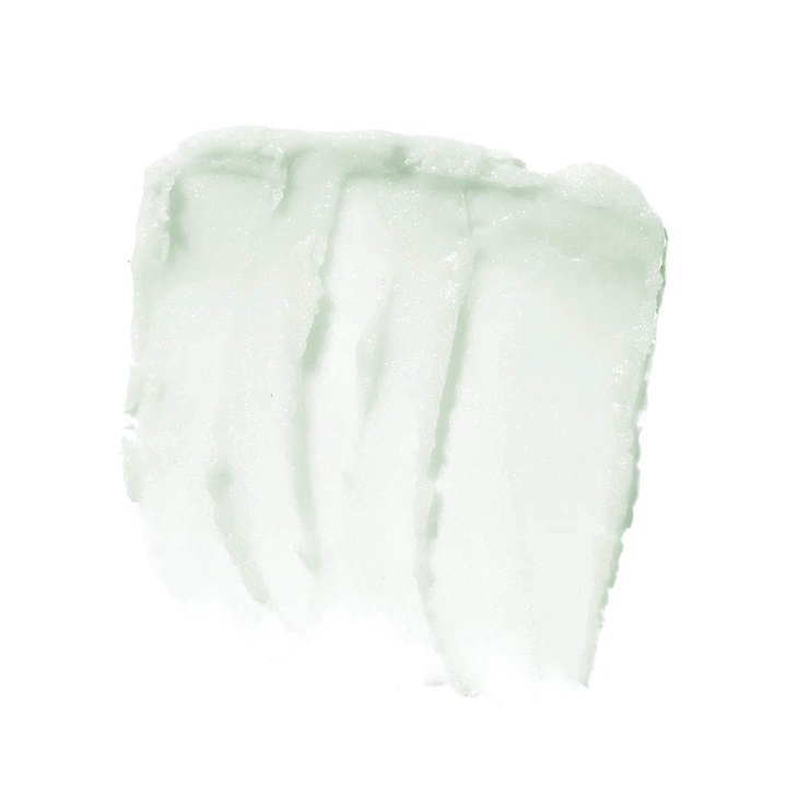 Бальзам для губ E.l.f. Cosmetics Lip Exfoliator Mint Maniac