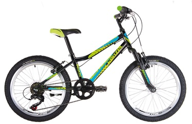 "Kenzel Roxis SF 24"" 33 Black/Blue/Green"