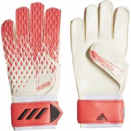 Перчатки вратаря Adidas Predator 20 Match, 10