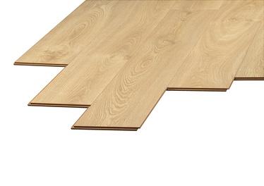 Lamineeritud puitkiudpõrand Domoletti Domoletti D2044, 12 mm, 33