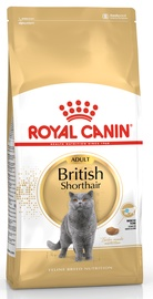 Royal Canin FBN British Shorthair 400g