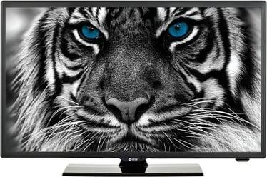 Televiisor Estar LEDTV22D4T2