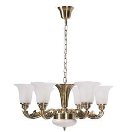 Domoletti A1673-6 6x60W LED Copper