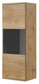 Halmar Nest W-1 Display Cabinet Oak/Black
