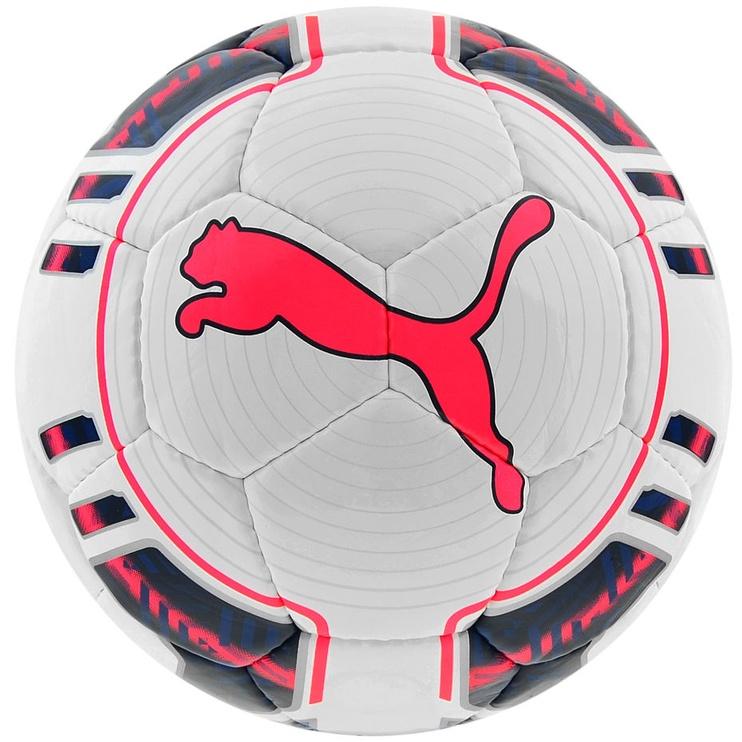 Puma EvoPower Futsal 4 White Navy Pink