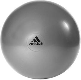 Adidas Anti-Burst Gym Ball 75cm Gray