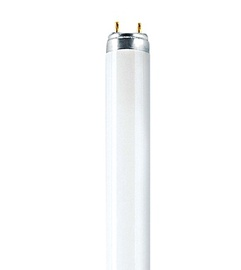 Liuminescencinė lempa Narva T8, 36W, G13, 4000K, 3350lm