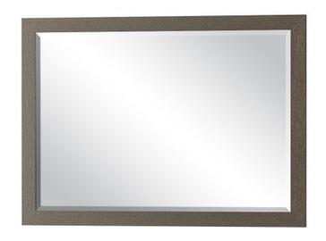 Mebel Service Tokio 2D Mirror 100x72cm Dark Venge