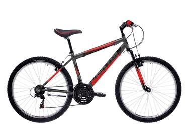 Vyriškas kalnų dviratis Kenzel AVOX SF