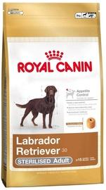 Сухой корм для собак Royal Canin SHN Labrador Adult Sterilised 12kg