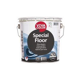 Põranda värv Vivacolor Special Floor, C baas, 0,9 l