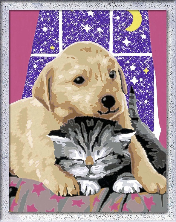 Ravensburger Painting By Numbers Romantic Cat & Dog 286478
