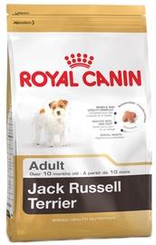 Royal Canin BHN Jack Russel Terrier Adult 0.5kg