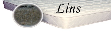 SPS+ Lins, 60x120x2 cm