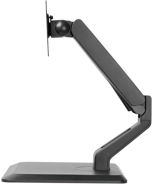 NewStar Flat Screen Desk Mount 10-32'' Black