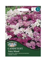 SARIKIBEERIS Fairy Mixed