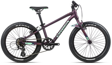"Jalgratas Orbea MX 20 Dirt, violetne, 20"""