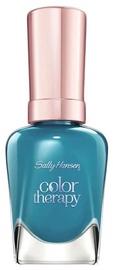 Sally Hansen Color Therapy Nail Polish 14.7ml 460