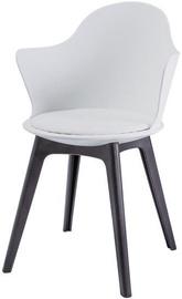 Valgomojo kėdė Signal Meble Matteo II White, 1 vnt.