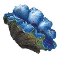 Boyu Aquarium Ornament CW-73