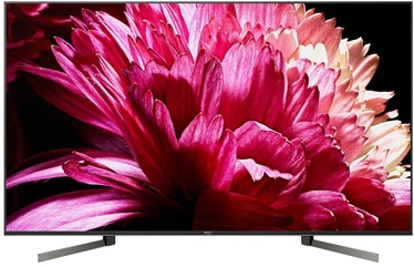Televizorius Sony KD-65XG9505
